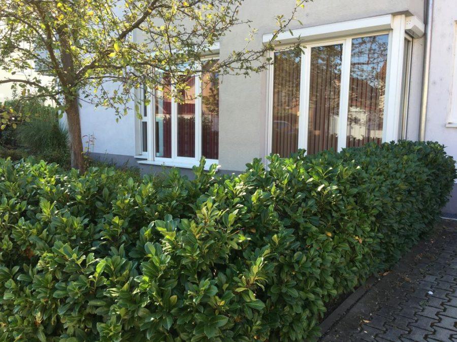 ein wohntraum attraktive gro z gige 3 zimmer eigentumswohnung mit privatgarten vr mainspitze. Black Bedroom Furniture Sets. Home Design Ideas